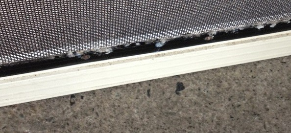 Avoid Corrosion of Security Screens and Doors Example 3